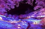 【日本夜景遺産】この冬、絶対に観ておきたい都内近郊イルミネーション4選 画像1