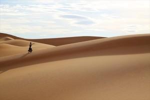 画像:限りなく自由!サハラ砂漠を散歩して、お気に入りの砂丘を見つける旅