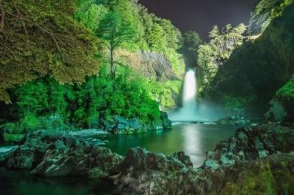 まるでファンタジーの世界!神秘の森の不思議なホテル 画像1