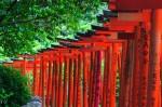 外国人旅行者が日本で体験してみたい19のこと 画像1
