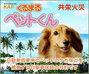pet_banner_ロゴ入り