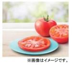 バーガーにトマトのトッピング  マクドナルドの新サービスに拍手! 画像1