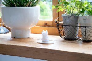 画像:盛り塩が招き猫に!? 令和初のお正月にぴったりの縁起物