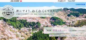 画像:桜を見に行けなかった人はここでお花見だ!? 桜の花びらが舞い散る穴場スポットをこっそり紹介